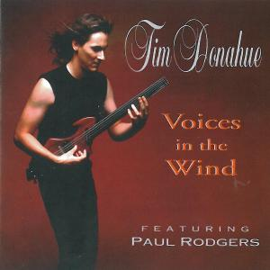 DONAHUE, TIM - VOICES IN THE WIND 39062
