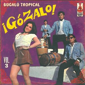 VARIOUS - GOZALO! VOL.3 40284
