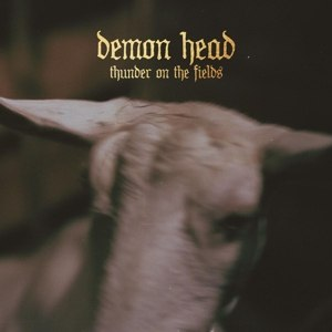 DEMON HEAD - THUNDER ON THE FIELDS 107662