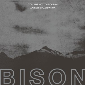 BISON - YOU ARE NOT THE OCEAN YOU ARE THE PATIENT 110189