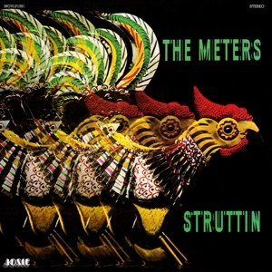 METERS, THE - STRUTTIN 116370